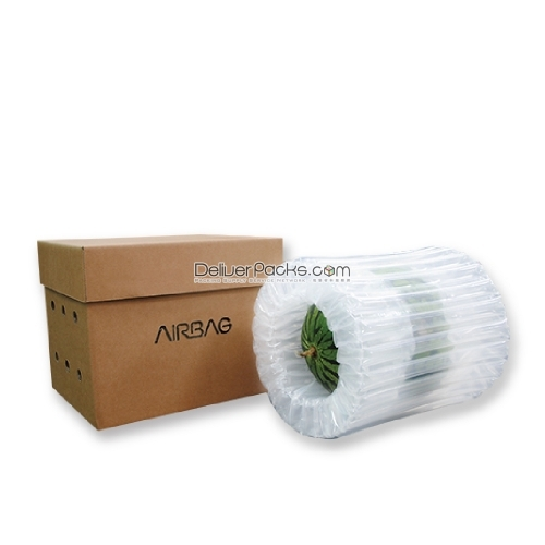 AIRPCS瓜果氣柱包裝